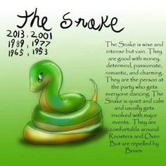 Chinese Astrology - The Snake