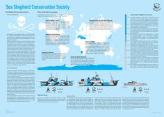 Sea Shepherd Whaling Infographics by Tommaso Zennaro, via Behance