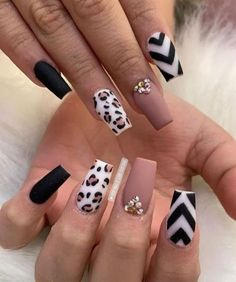 45 Stunning Fall Acrylic Nail Designs and Ideas 2019 45 Stunning Fall Acr. - 45 Stunning Fall Acrylic Nail Designs and Ideas 2019 45 Stunning Fall Acrylic Nail Designs a - Fall Nail Designs, Acrylic Nail Designs, Chevron Nail Designs, Leopard Nail Designs, Ongles Bling Bling, Leopard Print Nails, Leopard Nail Art, Valentine Nail Art, Fall Acrylic Nails