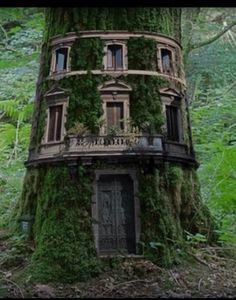 Fairy houses...