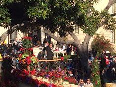 The Batchelor, 2015 rose bowl parade, pasadena, california