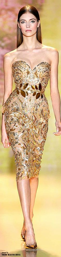 Zuhair Murad Spring/Summer 2014 Couture. I prefer off-shoulders or something else on the design of the dress' décolletage.
