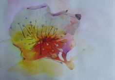 My very first painting with watercolour. Challenging and inspiring. Art. Abstract. Flower. watercolour. www.echt.nz