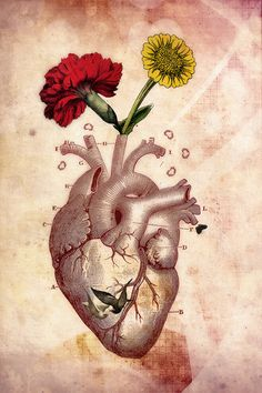 Anatomie 2, Photo Collage, Vintage, Anatomical Heart, Anatomy by ThePhotoImpression on Etsy