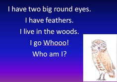 Who am I? A PPT for children to work out which nocturnal creature is being described, before revealing the picture