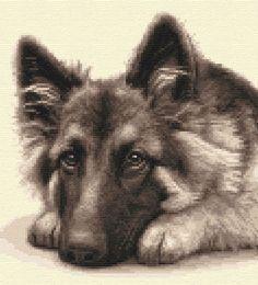 GERMAN SHEPHERD DOG, puppy, ALSATIAN full counted cross stitch kit