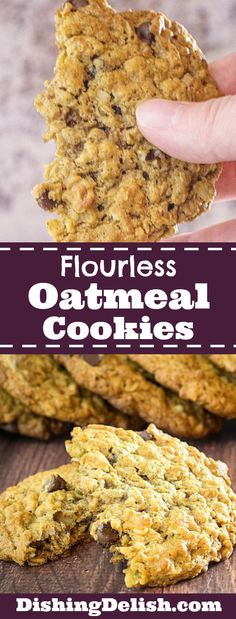 Flourless Oatmeal Cookies With Chocolate Chips are really simple to make and a hit every time I serve them! Theyre soft and chewy with little bites of sweet chocolate and crunchy walnuts and flavored with honey cinnamon and nutmeg. Flourless Oatmeal Cookies, Flourless Desserts, Healthy Oatmeal Cookies, Oatmeal Chocolate Chip Cookies, Oatmeal Cookies Gluten Free, Oatmeal Cinnamon Cookies, Best Gluten Free Cookies, Chocolate Chocolate, Simple Oatmeal Cookie Recipe