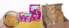 Masso Vita: Whiskas para gatos castrados