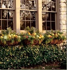 fill fruit and gourds with natural greens for flower boxes for the fall
