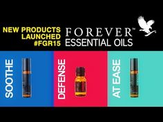 New Product Forever Living Essential Oils Blends Launched at Forever Global Rally 2015 at Singapore. Scent can recall a memory, calm our nerves, and ease our. Forever Living Aloe Vera, Forever Aloe, Essential Oil Blends, Essential Oils, Forever Living Business, Natural Aloe Vera, Forever Living Products, Peppermint, How To Find Out
