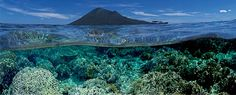 A beautiful shot of the Bunaken Marine Park from the North Sulawesi Watersports Association website
