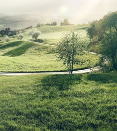 Entdecke Deine Leidenschaft · Aargau Tourismus Green Nature, Most Beautiful, Country Roads, Mountains, Life, Law School, Tourism, Paisajes, Passion