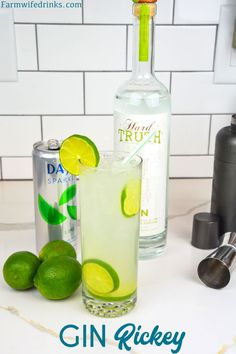 The gin rickey cocktail recipe is a highball cocktail made with fresh-squeezed lime juice, gin, and soda water with an extra garnish of lime slices. Easy Gin Cocktails, Classic Gin Cocktails, Gin Cocktail Recipes, Alcoholic Cocktails, Craft Cocktails, Cocktail Drinks, Summer Cocktails, Gin Martini Recipe, Easy Drink Recipes