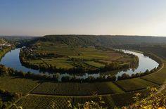 Die Neckarschleife bei Mundelsheim Foto: Leserfotograf gschl