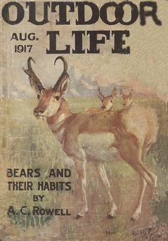 1917 Hunting Magazines, Fishing Magazines, Old Magazines, Hunting Art, Hunting Stuff, Deer Hunting, Magazine Art, Magazine Covers, Outdoor Life Magazine