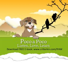 Get your FREE CritterKin Halloween Tale and meet the spooky Poco a Poco vultures! Visit: http://www.critterkin.com/ifaw.html