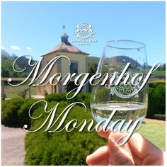 Raise your glass to the new week. Visit the estate for Morgenhof Monday. Start your week of the only way that it should be – With us.