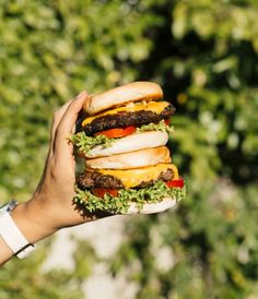 40 Delicious and outrageous burger recipes! Just how good do these burger recipes look? Best Turkey Burgers, Grilled Turkey Burgers, Turkey Burger Recipes, Pork Burgers, Beef Recipes, Shake Shack Burger, Fried Chicken Burger, Buffalo Chicken Burgers, Bbq Burger