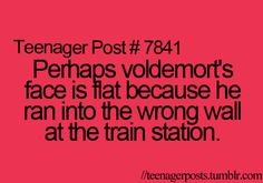 """Perhaps Voldemort's face is flat because he ran into the wrong wall at the train station."" HAHAH"
