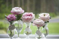 Flirty Fleurs Rose Study with David Austin Garden Roses - Carey, Constance, Miranda, Keira, Charity - Blush Pink Garden Roses