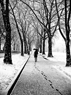 Footprints; photograph by Scott Rinckenberger. A woman walks a snowy sidewalk during a rare winter storm in Seattle.