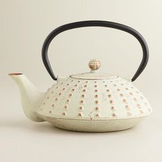 Ivory Hobnail Cast Iron Tea Kettle --- reminds me of a sea urchin...would be cool for a beach style home