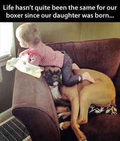 With a boxer...  you can do this!! Great dogs to have with kids... cos they are clowns, cuddlers and love kids!!