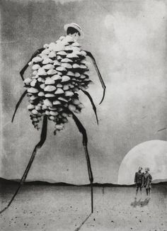 Jaco Putker is an artist and printmaker from the Hague, Netherlands. He uses digital and traditional methods of printmaking to create his pictures but prefers to work with photopolymer, or solar plate, etching Collages, Collage Art, Vintage Photography, Art Photography, Mushroom Art, Alien Art, Jaco, Creepy Art, Prints For Sale