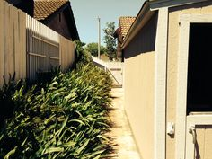 Backyard side yard ~ Sheryl Lynn Johnson  (805) 907-8270 SherylLynn@ConnectingHeartsToHomes.com CalBRE #01446902