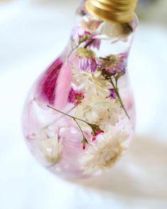 Flowerium : de superbes créations florales dans des ampoules