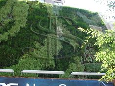 Green Wall | Is Pure Yogau0027s U201cLiving Billboardu201d Just Rotten Advertising?