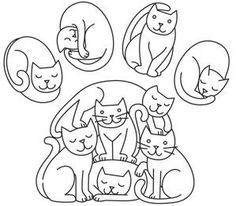 Kitty Paw_image