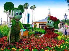 Micky and Minnie Garden in Florida Magic Kingdome