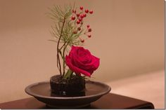 Modern Holiday Floral Arrangements: The Perfection of One Bloom