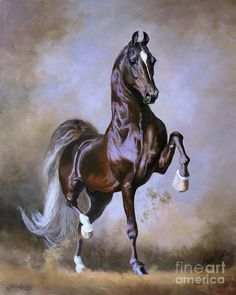 Wgc Sir Silver Knight Art Print by Jeanne Newton Schoborg.  All prints are professionally printed, packaged, and shipped within 3 - 4 business days. Choose from multiple sizes and hundreds of frame and mat options.