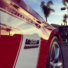 Pony's and palm trees.... #MustangMonday #Saleen