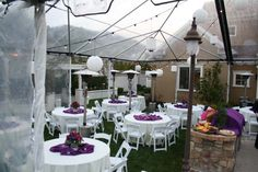 Allie's Party Rental White and Regal Purple Linen under Clear Top Tent