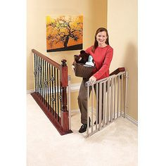 Evenflo Secure Step Top of Stair Gate - poss dog gate Top Of Stairs Gate, Safety Gates For Stairs, Baby Gate For Stairs, Child Safety Gates, Stair Gate, Child Gates, Dog Gates, Best Baby Gates, Kids Gate