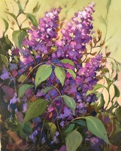 Floral Paintings, Paintings I Love, Lilacs, One Pic, Mary, Canvas, Artist, Tela, Lilac