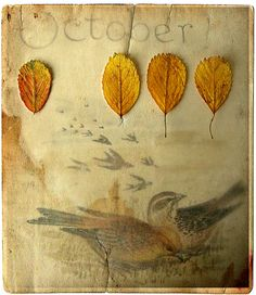 Sorry I am so October-obsessed, but it is that time of year again..by Carolyn Saxby (Love Stitching Red)
