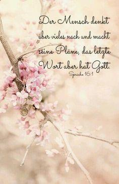 Es lebt sich doch viel entspannter, wenn man weiß dass man nicht unbedingt für alles einen Plan haben muss...                                                                                                                                                                                 Mehr