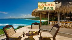 Me and my wife have a dream to open an ALOE BAR on the beach of San Andres Tenerife #myforeverdream #tenerife #beachbar #aloebar