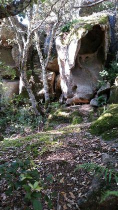 Domus de janas. Nuoro. Sardinia.