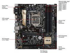 ASUS Z170M-PLUS LGA 1151 Intel Z170 HDMI SATA 6Gb/s USB 3.0 Micro ATX Intel Motherboard