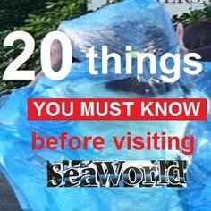 Best tips on net when visiting Sea World Orlando, FL