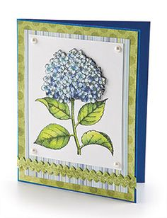 CardMaker Card Pattern of the Month Crafts For Seniors, Senior Crafts, Happy Spring, Blue Hydrangea, Card Patterns, Homemade Cards, Spring Flowers, Note Cards, Gift Tags