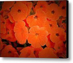 Petunia Carnival Canvas Print / Canvas Art By Dorothy Berry-lound #colourharmony #interiordecor #orange #chakracolour