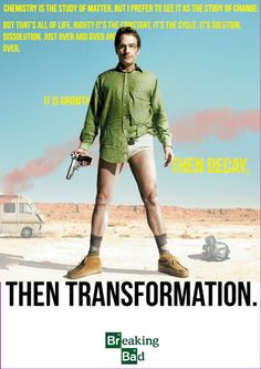 dailybreakingbad:  Growth, decay, then transformation. Poster I put together of my favourite quote. http://dailybreakingbad.tumblr.com/