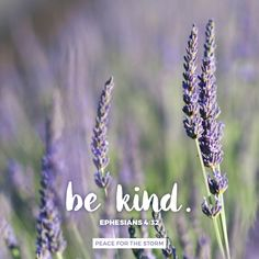 And be kind to one another, tenderhearted, forgiving one another, even as God in Christ forgave you. Ephesians 4:32 (NKJV). Watch the video devotional that goes along with this verse at http://www.itiswritten.com/television/episodes/13450