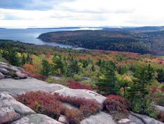 Pink granite with red bushes and ocean view, the view from Gorham Mountain during fall. Photo by NPS / Ginny Reams  www.fourpointsbangorairport.com